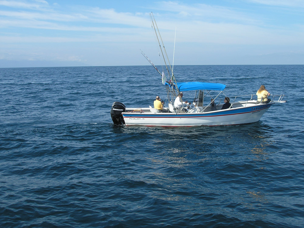 Photo gallery puerto vallarta fishing for Fishing puerto vallarta