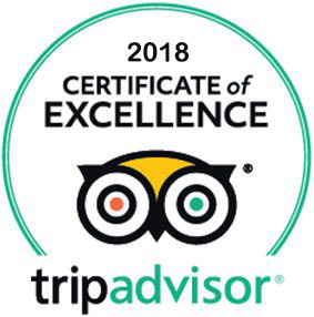puerto vallarta tripadvisor reviews