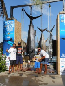 fishing tournament in puereto vallarta