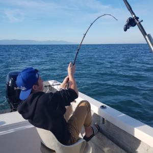 mexico puerto vallarta fishing