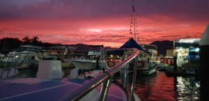puerto vallarta fishing sunrise