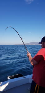 february fishing report for puerto vallarta