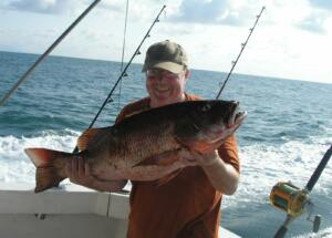 puerto vallarta fishing red snapper
