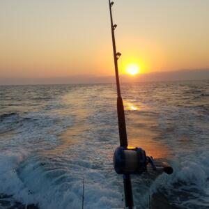 fishing at night in puerto vallarta
