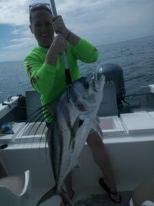 puerto vallarta roosterfish