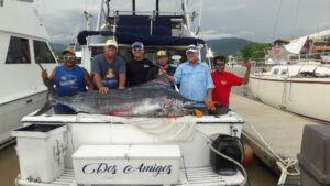 august puerto vallarta fishing report